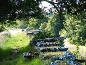 Romeran wall at Silchester