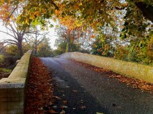"Thomas ""Diamond"" Pitt's bridge in Swallowfield Park"