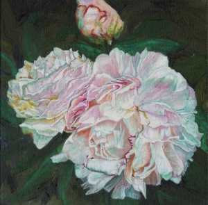 Peony painting by Helen White