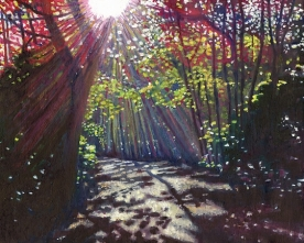 Scattered light painting of dappled light through trees by Helen White