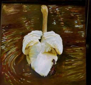 swan insitu 10