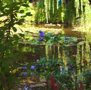 Monet 25