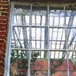 blog window 5