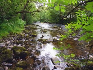 Four falls, Brecon