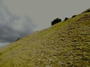 Hillside, Brecon