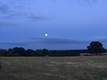 July full moon 14.jpg